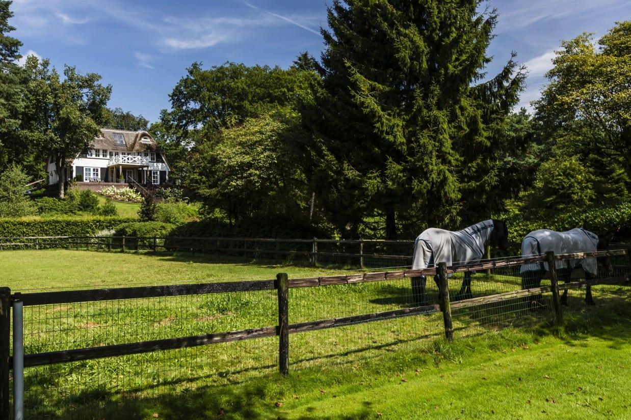 2. Rietgedekte villa bouwen, landhuis met zwarte paarden